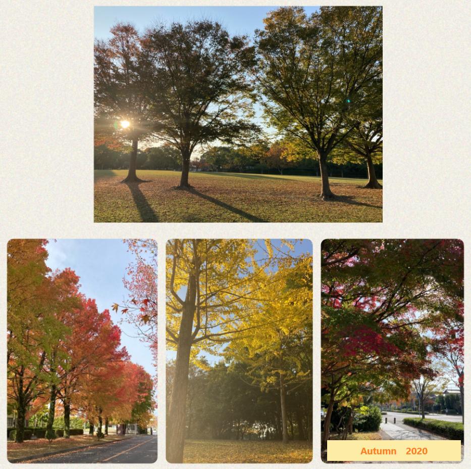 秋の三連休